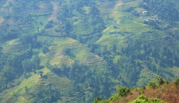 The beautiful hillsides with their terracing and farming