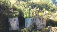 Local decoration in Lukla